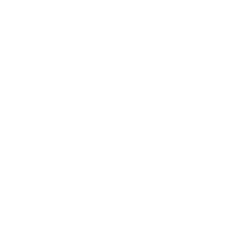 Ships Agency Services